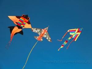 Бумажно-змеиное воздушное шоу!)