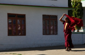 На улице Малого Тибета