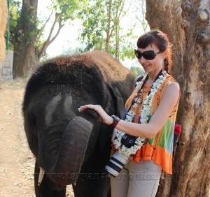 Со слонёнком
