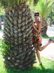 С пальмой)