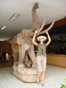 Слоник из тика