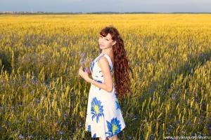 Васильки, васильки на широком бескрайнем просторе, Яркий полог небесный цветов полевых, Даль цветами манит, как безбрежное синее море, Шелестя на ветру, сладко нежась в лучах золотых.